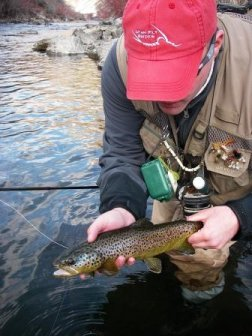 Ufg fish photo gallery utah fly guides for Provo river fly fishing