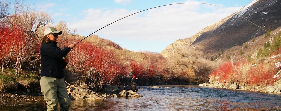 The Fly Fishing Experience You Dream About