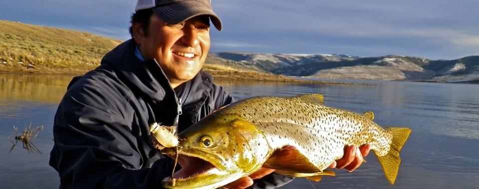 Catch Wild Trophy Trout
