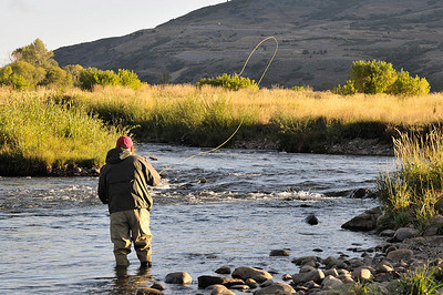 Middle Provo River Fly Fishing Guides