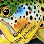 Water Color Brown Trout by Tim Johnson