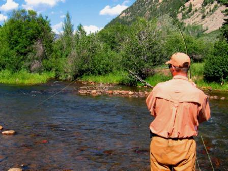 Eastern utah fly fishing utah fly guides for Trout fishing utah