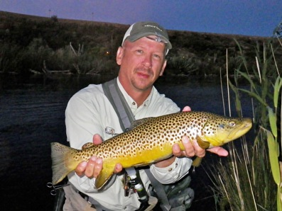 Brown Trout caught on Trico