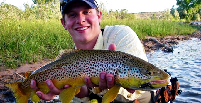 huge brown trout from a small stream