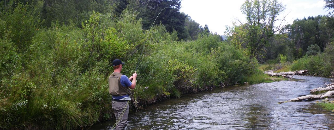 Book your utah fly fishing guide utah fly guides for Best fishing in utah