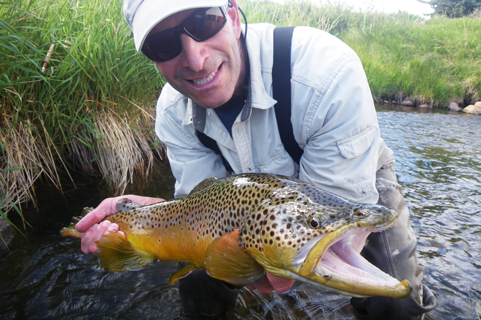 large-brown-trout-Utah
